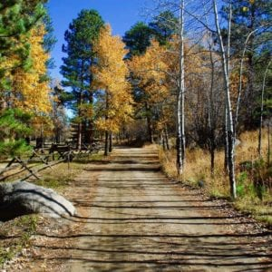 road to riversong in fall