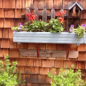planter boxes with flowers at the Inn